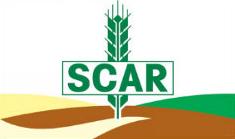 Client : SCAR